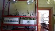 "Aquaponics system for students, at ""Venczel József"" High School in Miercurea Ciuc, Romania"
