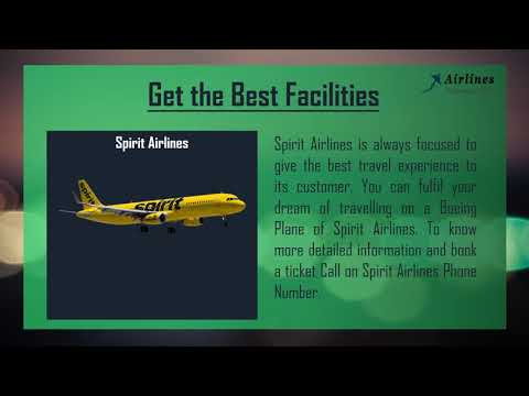 Book the Cheapest Flight Tickets at Spirit Airlines Phone Number