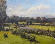 Wexford Pastorale