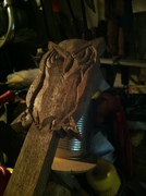 Owl headstock carving
