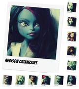 Addison Catamount