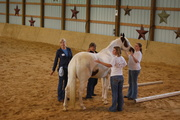 FAITH BASED EQUINE ASSISTED LEARNING AND TRAINING