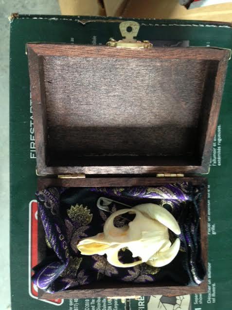 Rare Demon Skull