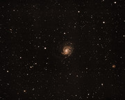 M101 Widefield