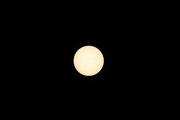2014 november 27 Sun