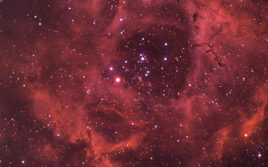 NGC2237-9 Rosette