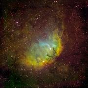 Tulip Nebula, SH2-101