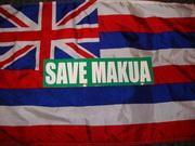 Save Makua