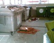 Altstoffe, Müll & Sperrmüll