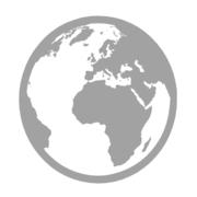 International Teachers