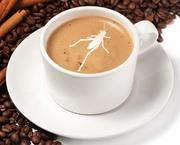 Coffee + Grasshopper
