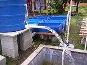 Aquaponics in Panama