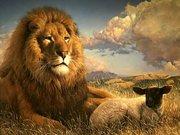 LionLamb[1]