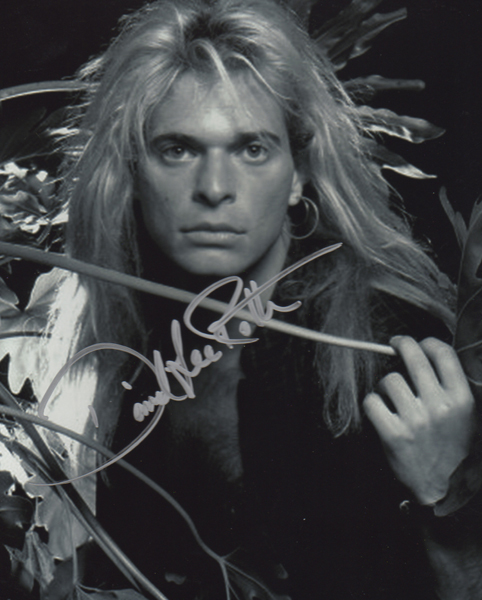David Lee Roth Authenticity Check