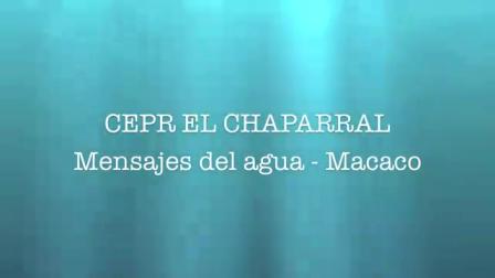lip dub Colegio El Chaparral