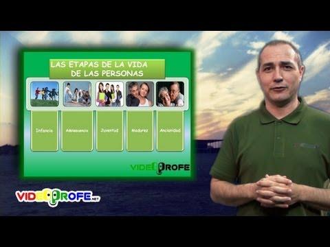 3º Conocimiento del Medio: 05. Las etapas de la vida de las personas Videoprofe.net