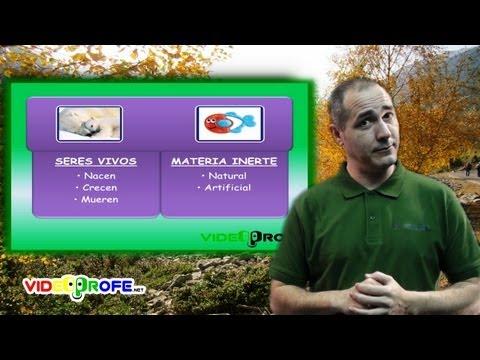 3º Conocimiento del Medio: 01. Los seres vivos y la materia inerte Videoprofe.net