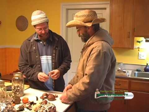 Growing mushrooms and healing teas