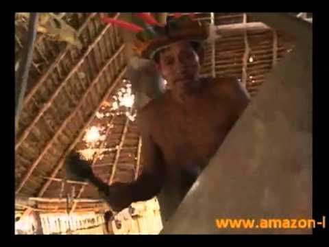 video Amazonas