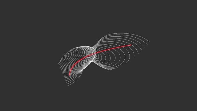 medial contours