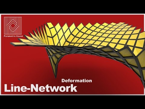Line-Network deformation