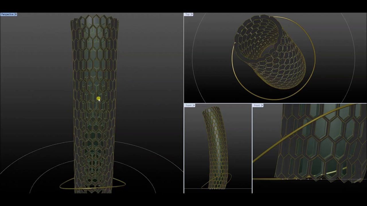 Simulation of Papaya Trunk Growth