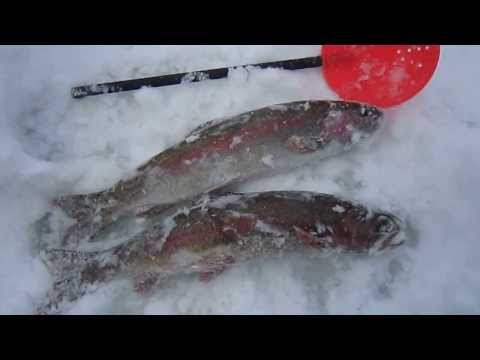 ice fishing jan 12 2014 002