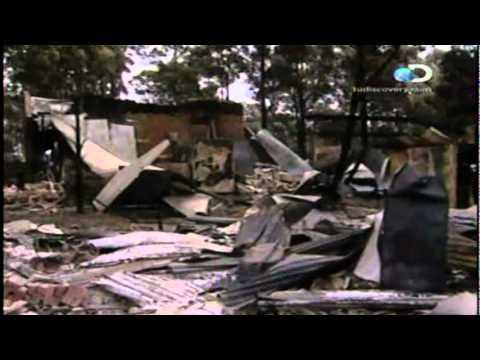 LAS PEORES CATASTROFES: INCENDIOS FORESTALES(3/3)
