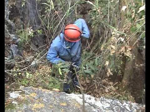 AGUICOA 2009.avi Espeleo en Michoacan