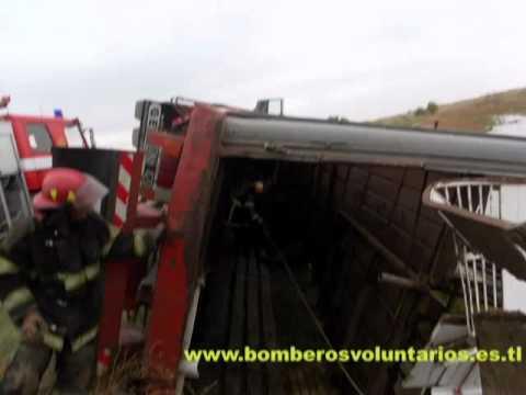 13 de Mayo de 2011 / Vuelco camion jaula con 120 vacunos / Laguna Cuero de Zorro, Trenque Lauquen / Argentina