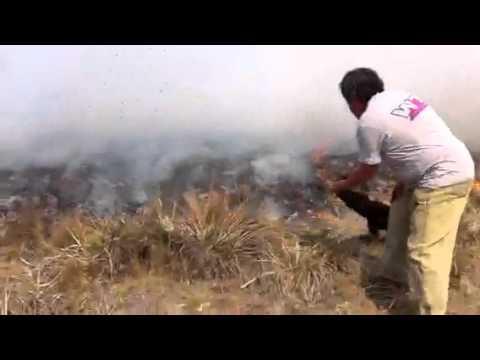El fuego no da tregua y es crítica la situación en el Valle de Punilla / Córdoba, Argentina