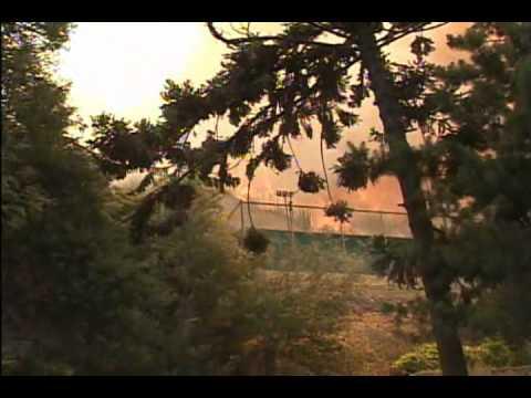 Bomberos Viña del Mar Temporada Forestal 2003-04 - chile