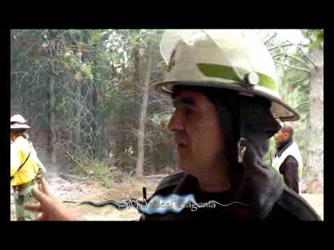 9-1-12Incendio Forestal en Chacra 30