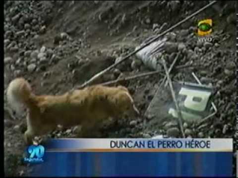 Busqueda y Rescate con Perros / Derrumbe del Jr. Italia / Peru