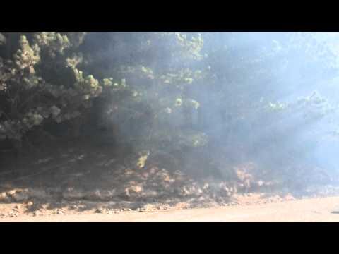 07-04-12 Incendio intencional en pinares San Martín de los Andes.