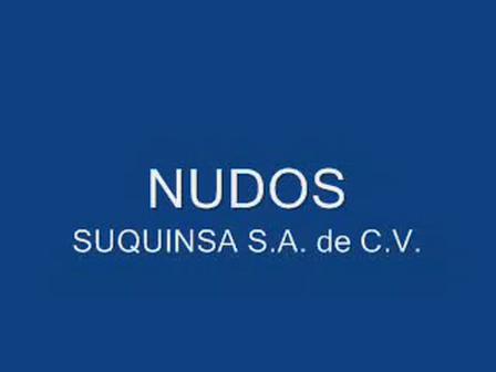 NUDOS (1) (1)