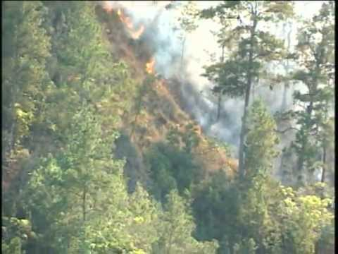 Incendio en montaña de Constanza 18 02 2013