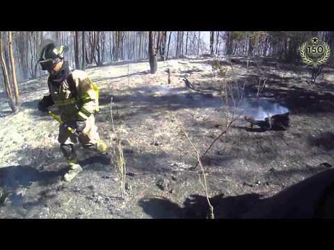 Así trabajó el CBS en el incendio forestal de San Pedro de Melipilla - Chile