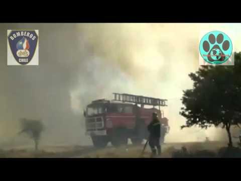 Impactantes imágenes del incendio Forestal que afecta a Melipilla - CHILE