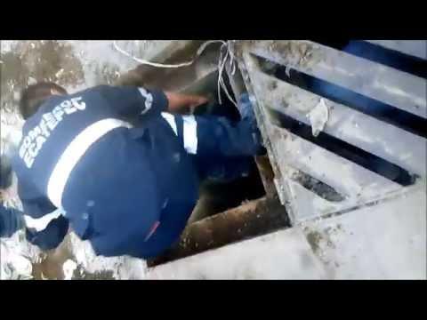 BOMBEROS ECATEPEC RESCATE DE CAN - MÉXICO / Vídeo Destacado de La Hermandad de Bomberos