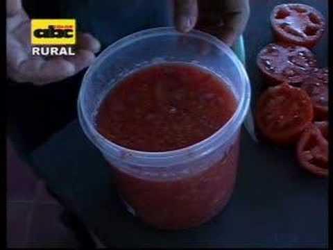 ...reproduxsiOm i extraxsiom de semiia de tomate...