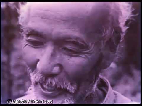 ...Enseñanzas de Masanobu Fukuoka  ...El Jardín Cercano a la Naturaleza... 1981...*...