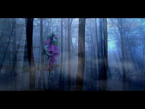 Vangelis:  Dream in an Open Place - Álom a természet ölén ( HD )