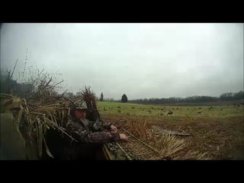 Christmas Eve Veterans Hunt, Sykesville,Maryland 2016