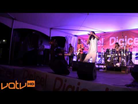 Serious Times Concert feat. Gyptian in Bermuda (2011)