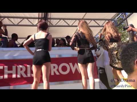 Disrespectful? Chris Brown Stopped These Chicks Performance To Promote His Single