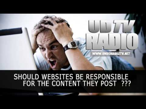 Should websites be responsible for the content they post ???