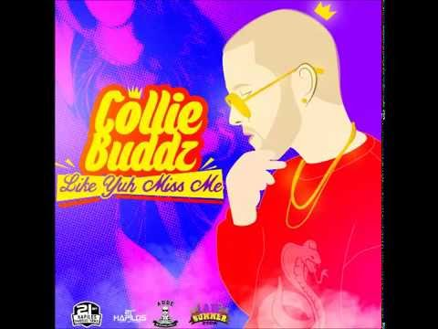 @CollieBuddz - Like Yuh Miss Me (Official Audio)