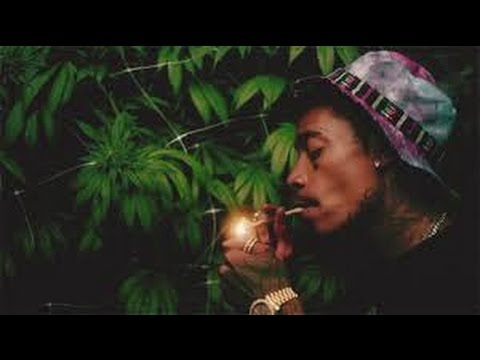 Rappers That Have They Own Weed Strains (Wiz Khalifia, Snoop Dogg Etc.) 420