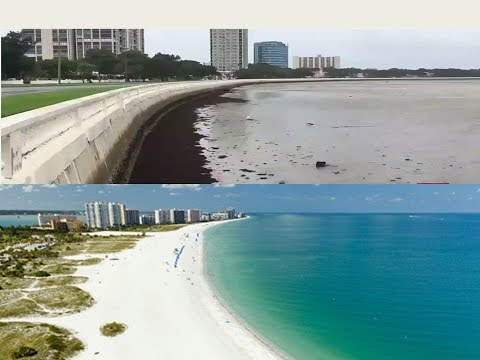 All The Ocean Water In Florida IsTotally Gone!! Hurricane Irma's AFTERMATH